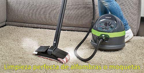LImpieza perfecta de alfombras y moquetas - como limpiar con una vaporeta