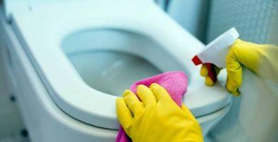 Como limpiar un inodoro muy sucio